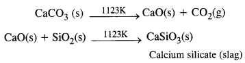 NCERT Solutions for Class 12 Chemistry Chapter6 General Principles and Processes of Isolation of Elements 9