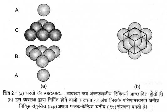 UP Board Solutions for Class 12 Chemistry Chapter 1 The Solid State 2Q.7.3