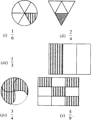 NCERT Solutions for Class 6 Maths Chapter 7 Fractions Ex 7.1