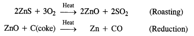 NCERT Solutions for Class 12 Chemistry Chapter6 General Principles and Processes of Isolation of Elements 13