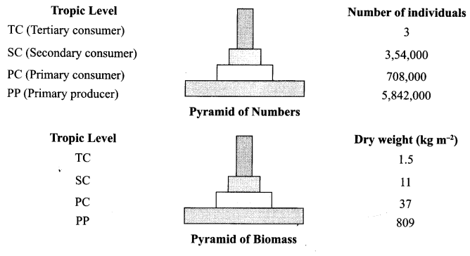 CBSE Sample Papers for Class 12 Biology Paper 3.9