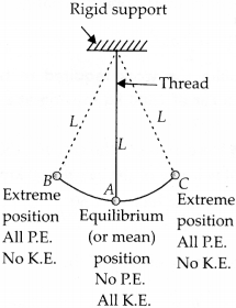 NCERT Solutions for Class 9 Science Chapter 11 Work and Energy 16