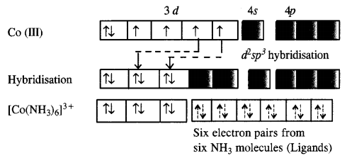 NCERT Solutions for Class 12 Chemistry Chapter 9 Coordination Compounds 8
