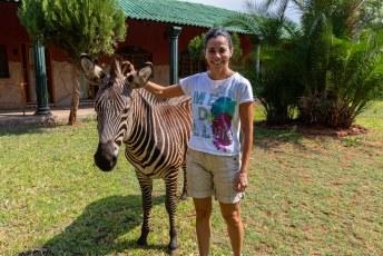 Daarna vertrokken wij naar Namibië. Maar natuurlijk niet zonder even afscheid te hebben genomen van de huis zebra's.