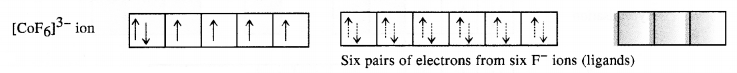 NCERT Solutions for Class 12 Chemistry Chapter 9 Coordination Compounds 26