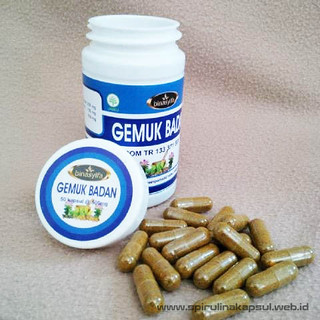 Obat Herbal Gemuk Penambah Berat Badan Di Apotik