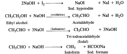 NCERT Solutions for Class 12 Chemistry Chapter 11 Alcohols, Phenols and Ehers e 13a