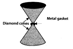 NCERT Solutions for Class 11 Physics Chapter 9 Mechanical properties of solid 16
