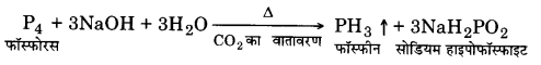 UP Board Solutions for Class 12 Chemistry Chapter 7 The p Block Elements Q.8