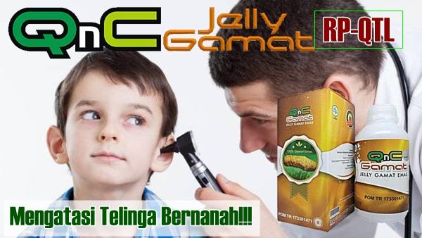 QnC Jelly Gamat Obat Telinga Bernanah Anak Yang Sudah Menahun