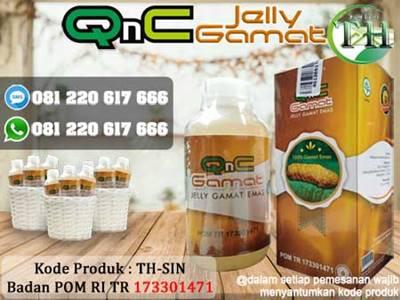 Obat Pilek Menahun Herbal QnC Jelly Gamat