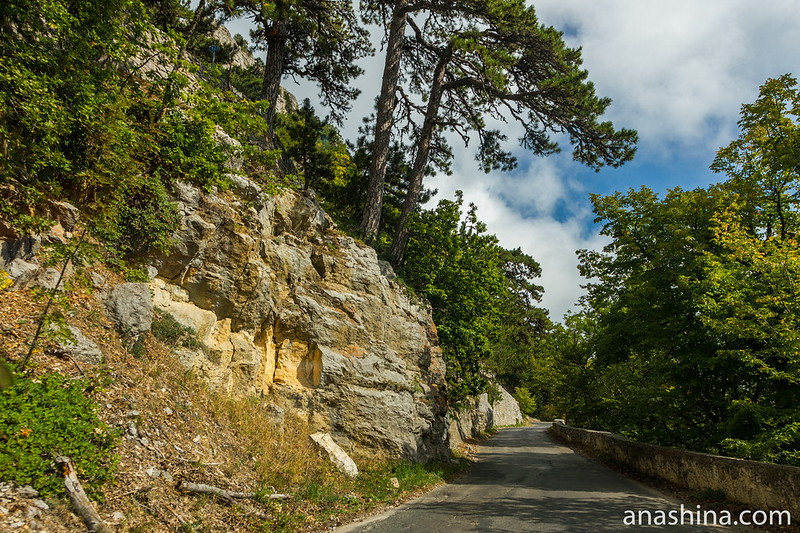 Дорога на Ай-Петри, Крым