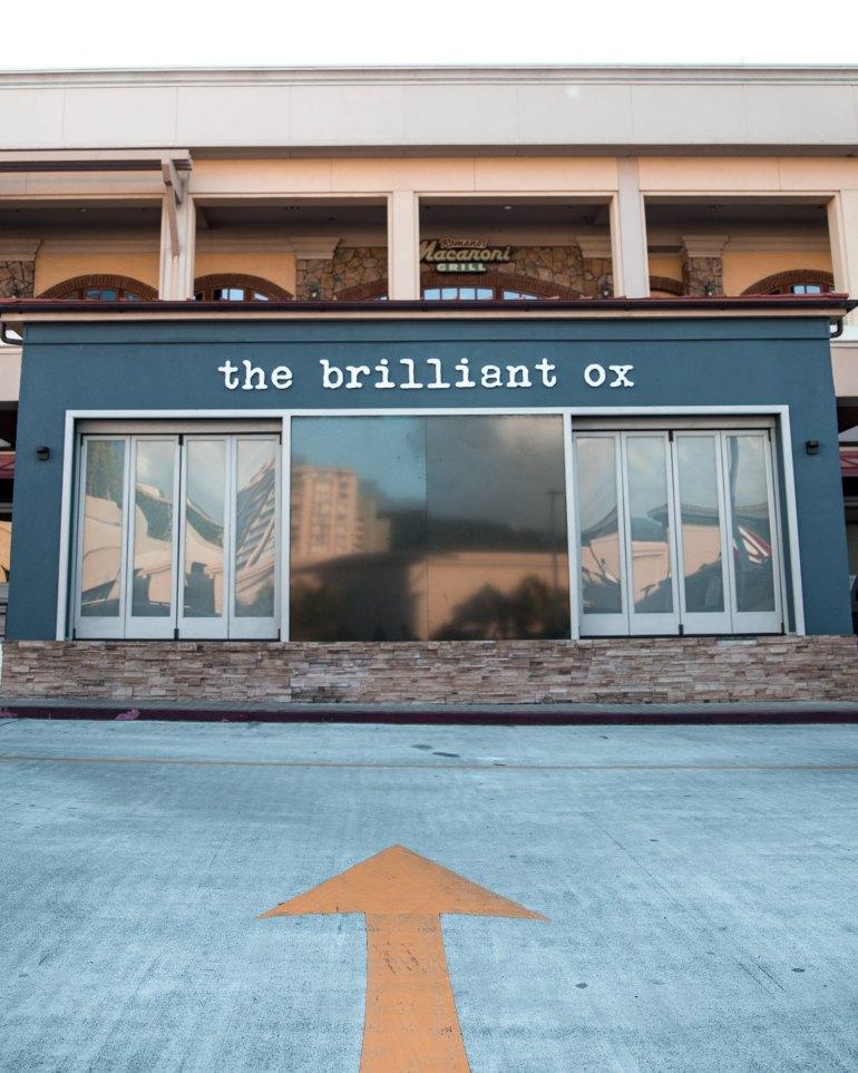 The Brilliant Ox