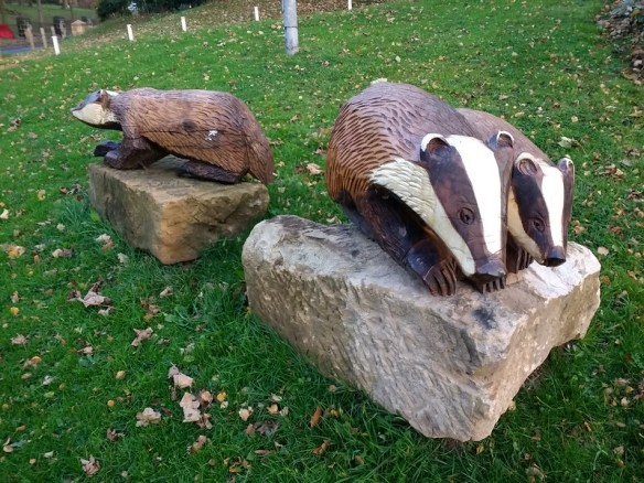 Brotton Badgers