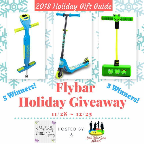 Flybar Holiday Giveaway