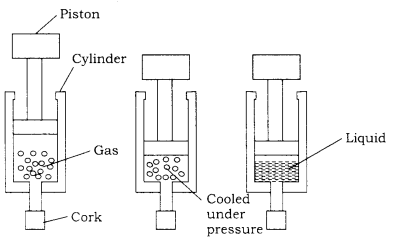 RBSE Solutions for Class 9 Science Chapter 2 Structure of