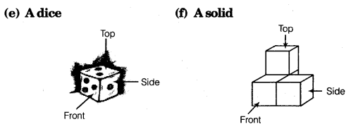 tiwari academy class 8 maths Chapter 10 Visualising Solid Shapes 13