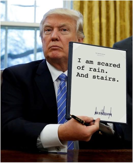 Trump_scaredofrain