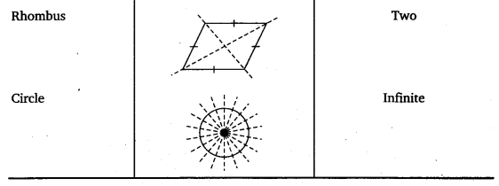 NCERT Solutions for Class 6 Maths Chapter 13 Symmetry 17