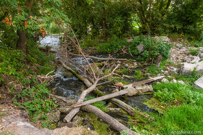Разрушенная плотина водяной мельницы, Воронежская область