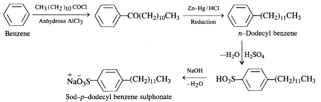 NCERT Solutions for Class 12 Chemistry Chapter 16 Chemistry in Every Day Life e21a