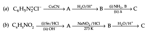 CBSE Sample Papers for Class 12 Chemistry Paper 2 Q.19.1