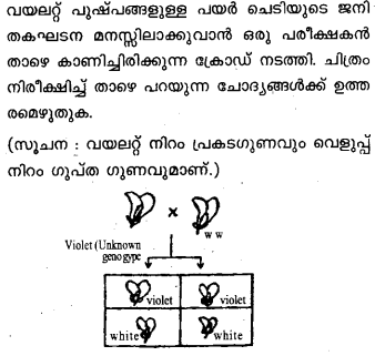 Plus Two Zoology Model Question Papers Paper 5.5