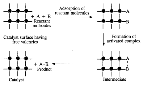 NCERT Solutions for Class 12 Chemistry Chapter 5 Surface Chemistry 4