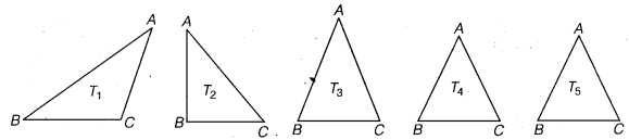 NCERT Solutions for Class 6 Maths Chapter 5 Understanding Elementary Shapes 3