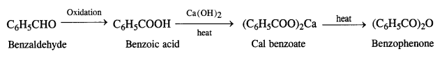 NCERT Solutions for Class 12 Chemistry Chapter 12 Aldehydes, Ketones and Carboxylic Acids e15c
