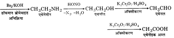 UP Board Solutions for Class 12 Chemistry Chapter 13 Amines 27