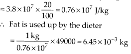 NCERT Solutions for Class 11 Physics Chapter 6 Work Energy And Power 18