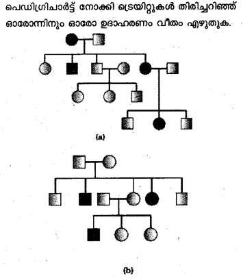 Plus Two Zoology Model Question Papers Paper 3.13