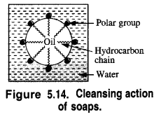 NCERT Solutions for Class 12 Chemistry Chapter 16 Chemistry in Every Day Life e25