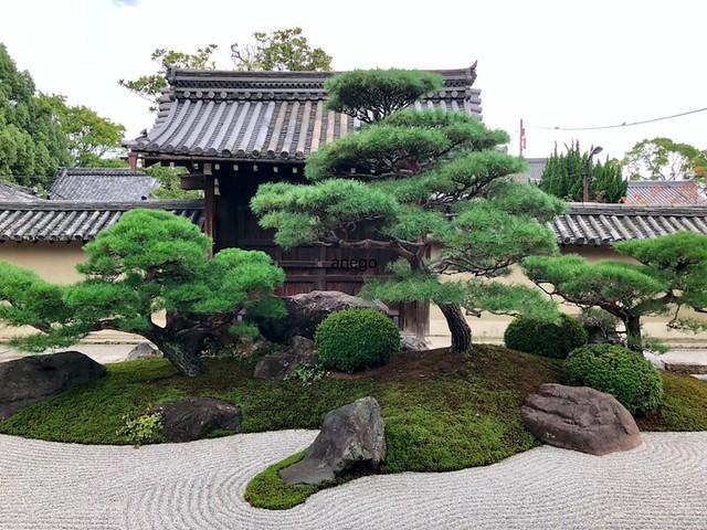 東寺 観智院