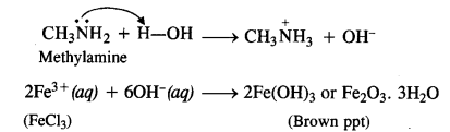 NCERT Solutions for Class 12 Chemistry e3B