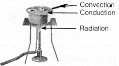 NCERT Solutions for Class 7 Science Chapter 4 Heat 2