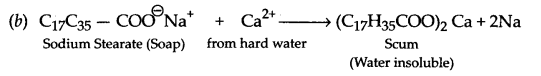 CBSE Sample Papers for Class 12 Chemistry Paper 2 Q.23