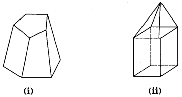 NCERT Solutions for Class 8 Maths Chapter 10 Visualising Solid Shapes 22