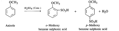 NCERT Solutions for Class 12 Chemistry Chapter 11 Alcohols, Phenols and Ehers ex 31b