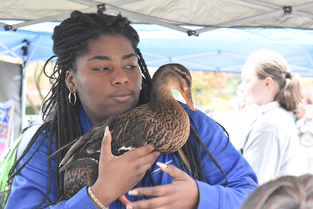 A student holds as duck from the Petting Zoo on Muse Lawn