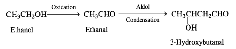 NCERT Solutions for Class 12 Chemistry Chapter 12 Aldehydes, Ketones and Carboxylic Acids e15b