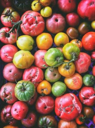 tomatoways (5 of 38)