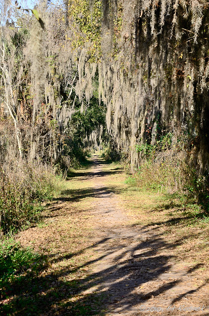 Marsh Rabbit Run trail