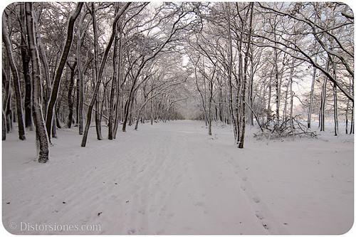 El túnel en la nieve