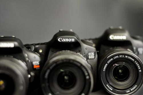 Canon T2i vs 60D vs 7D