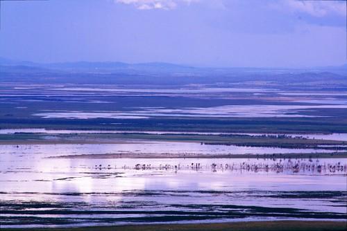 flood plains (south)