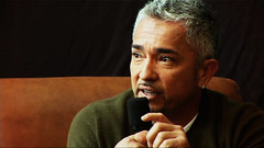 Cesar Millan on Small Dogs vs. Big Dogs