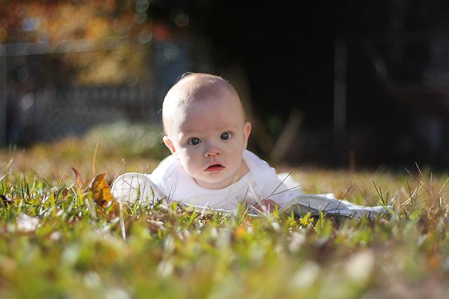 finn_grass