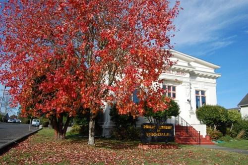 Public Library of Ferndale.